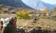 Дагестанок засылают в горы, телефоном пользоваться нельзя